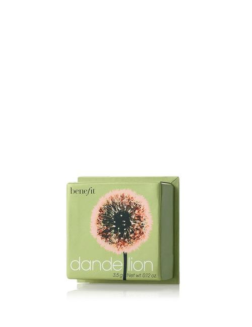 Closeup   dandelion powder mini